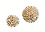 Sigay Shell Ball (Natural)