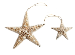 Bottlebrush Star with Pearls (White)