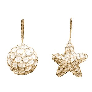 "4"" Clamrose Star Orn w/Pearls (White/Gold)"